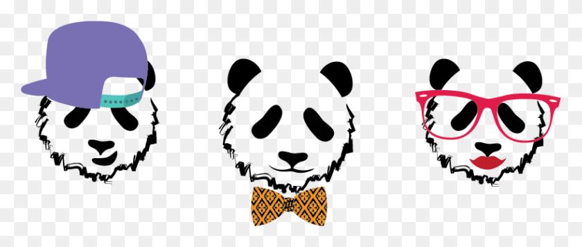 Illo Portfolio - Pandas PNG