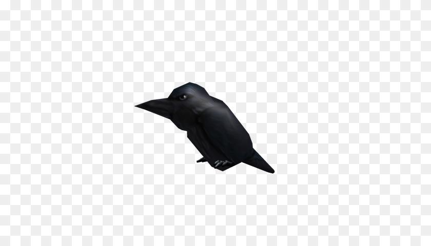 Image - Raven PNG