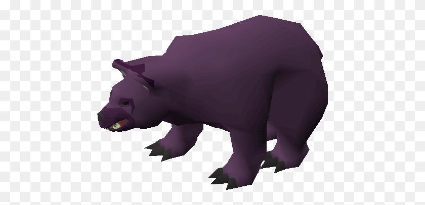 Image - Bear PNG