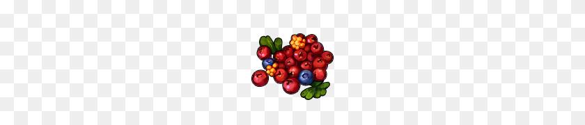 Image - Berries PNG