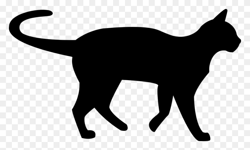 Image - Black Cat PNG