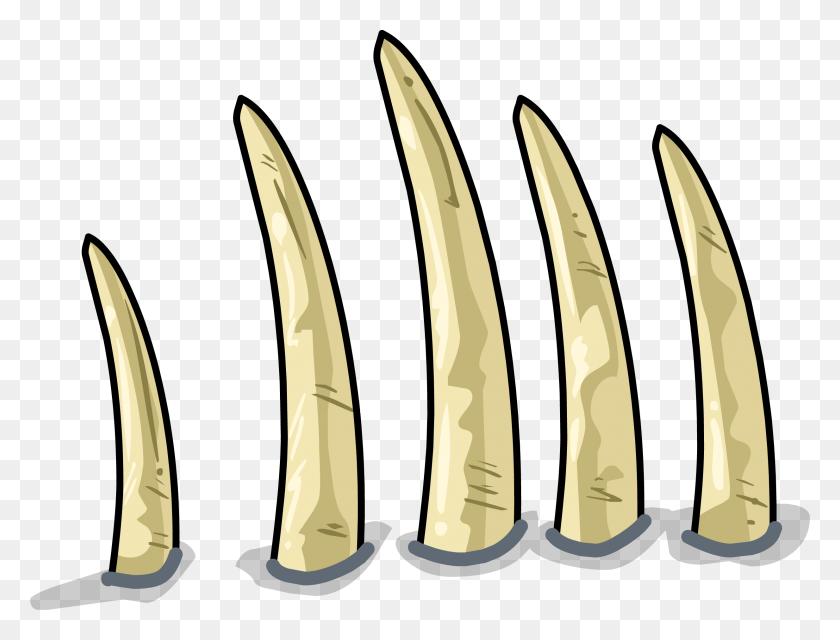 Image - Dinosaur Bones PNG