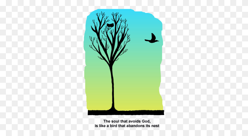 Image Bird Nest In Tree - Bird Nest Clipart