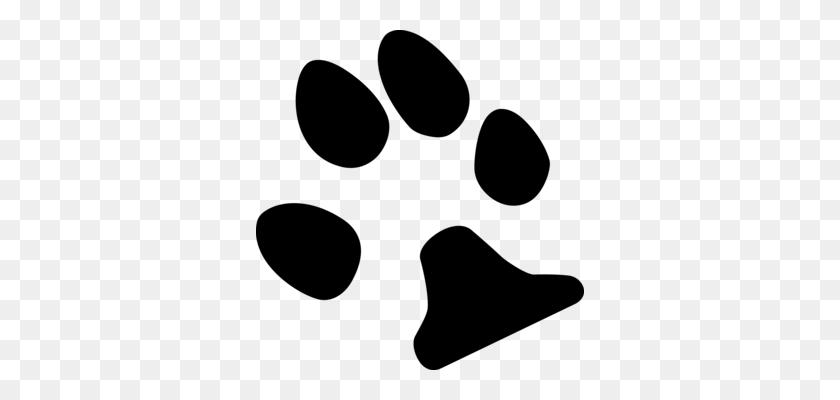 Jaguar Paw Cougar Felidae - Jaguar Paw Clipart