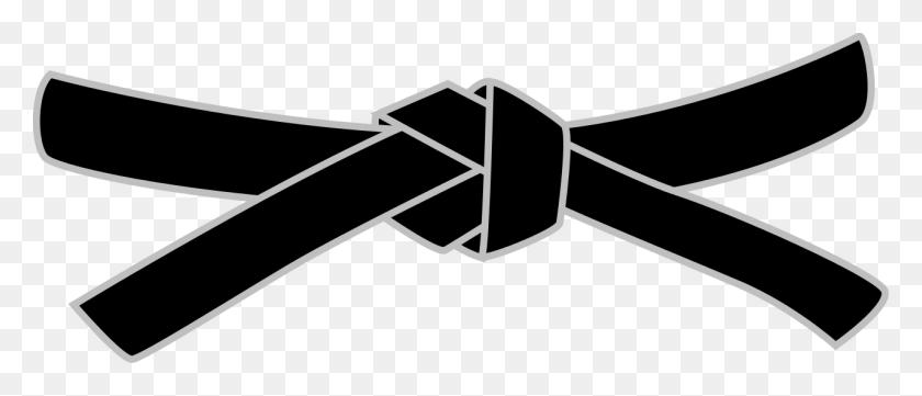 Judo Black Belt - Black Belt PNG