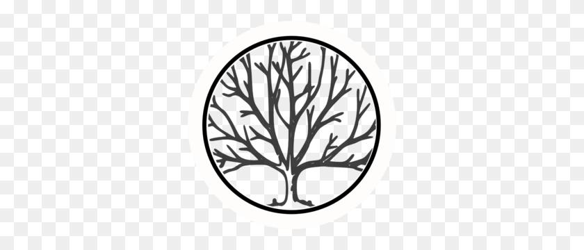 Julie Laub On Twitter - Oak Tree Silhouette PNG