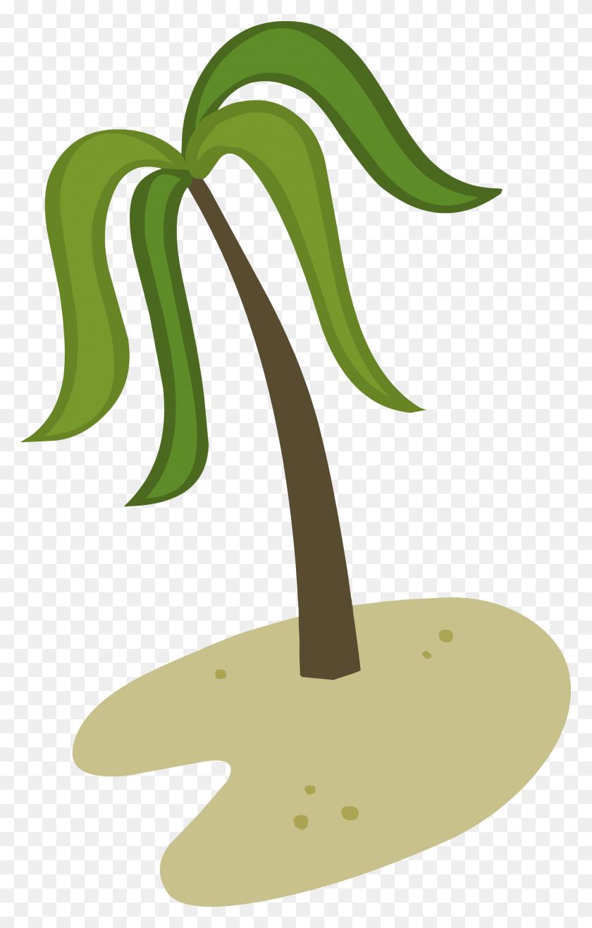 1776x2862 Julius Caesar Clipart Palm Tree - Free Clipart Palm Sunday