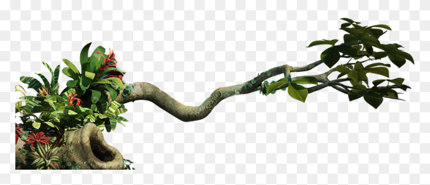 1024x397 Jungle Png Clipart Vector, Clipart - Plant PNG