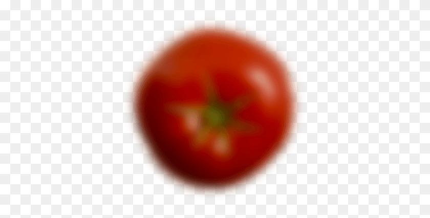 367x366 Kahlua Tomatoes - Tomato Slice PNG