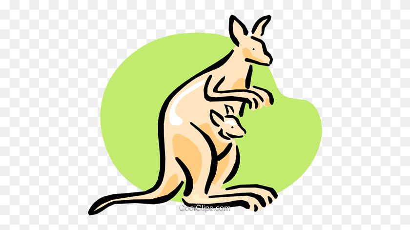 Kangaroo Paw Flower Stock Illustrations, Images & Vectors | Shutterstock