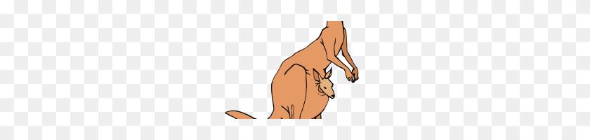 Kangaroo Clipart Kangaroo Kangaroo Clipart Herbivores Mammal Png - Baby Kangaroo Clipart