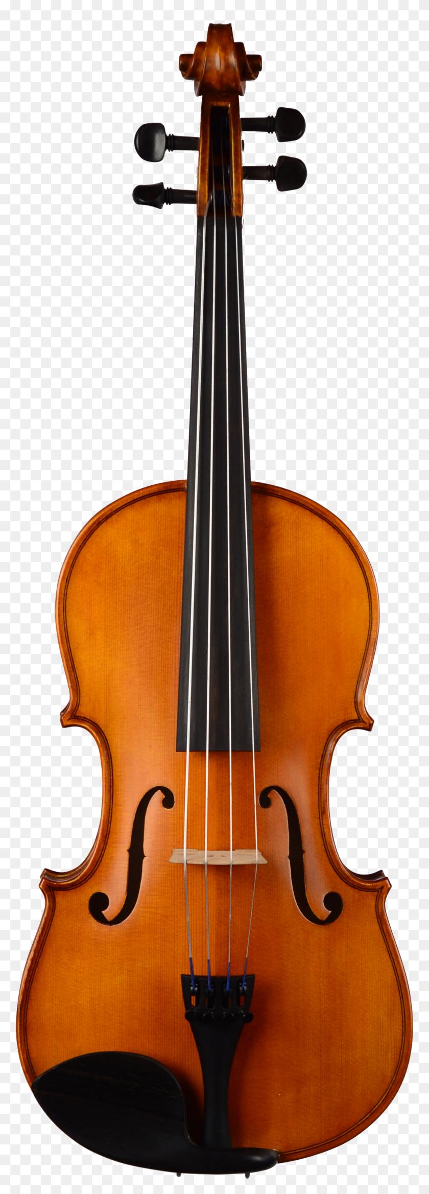 Keith, Curtis Clifton Viola Atlantic Strings - Viola PNG