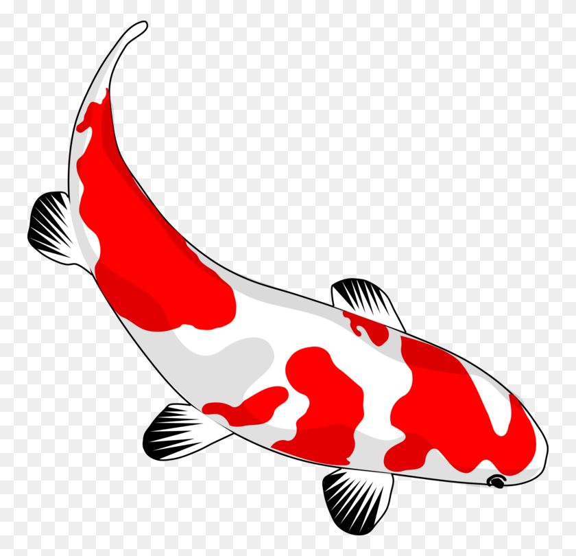 Koi Drawing Carp Fish Pond - Pond Clipart