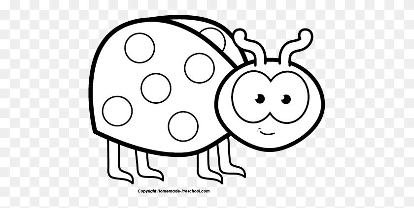 Ladybug Outline Ladybug Black And White Clipart - Flying Pig Clipart Black And White