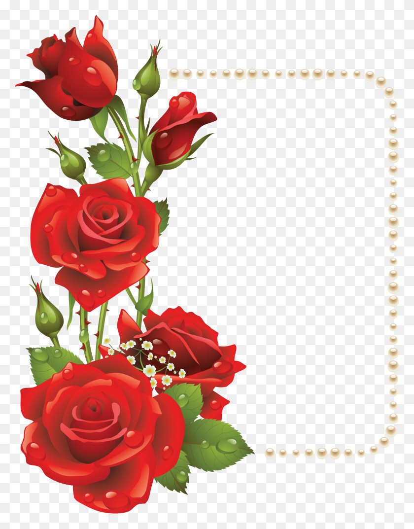Large Transparent Frame With Red Roses And Gallery Rose Border