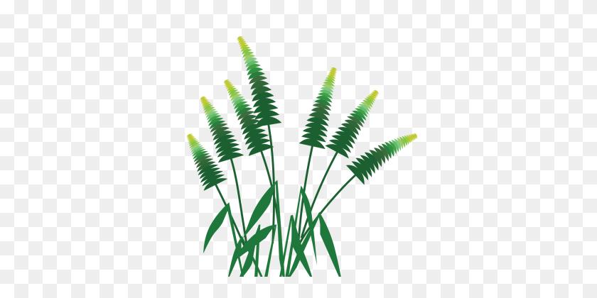 Cartoon Grass Clipart | Free download best Cartoon Grass