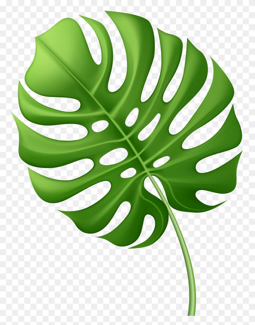 Large Tropical Leaf Png Clip Art - Tropical Border Clipart