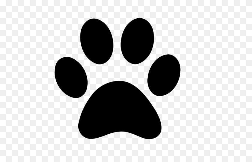 640x480 Latest Cliparts - Mountain Lion Clipart