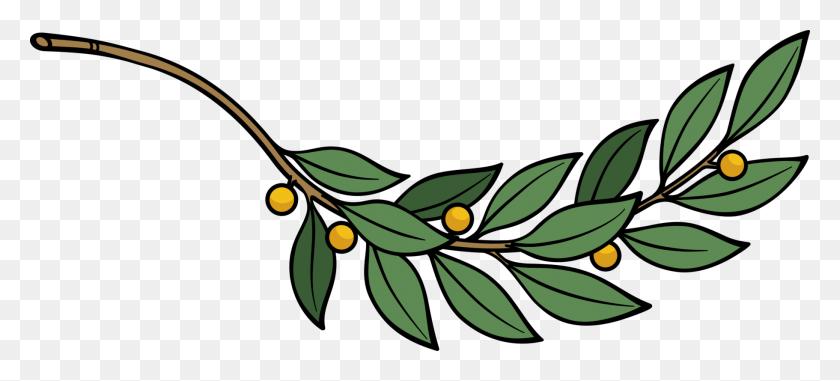 Laurel Wreath Bay Laurel Computer Icons Branch Tree Free - Olive Branch Wreath Clipart