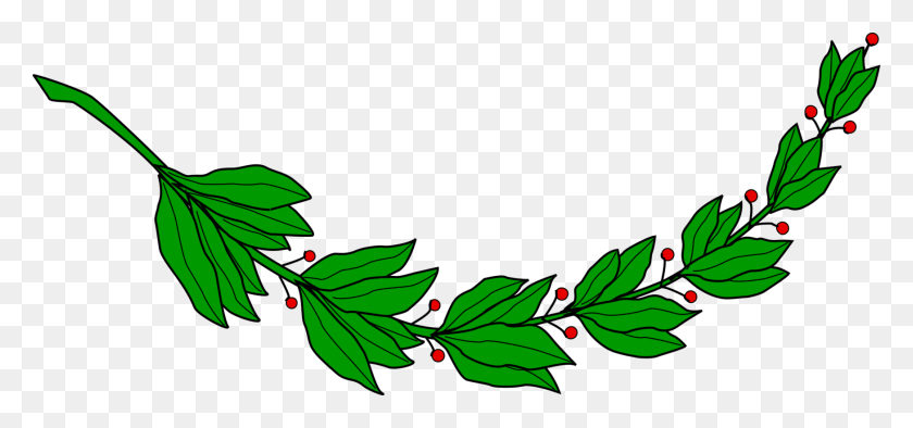 Laurel Wreath Computer Icons Bay Laurel Branch Drawing Free - Olive Wreath Clipart