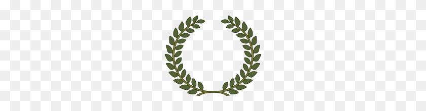 Laurel Wreath, Laurel Leaf - Laurel Leaves PNG