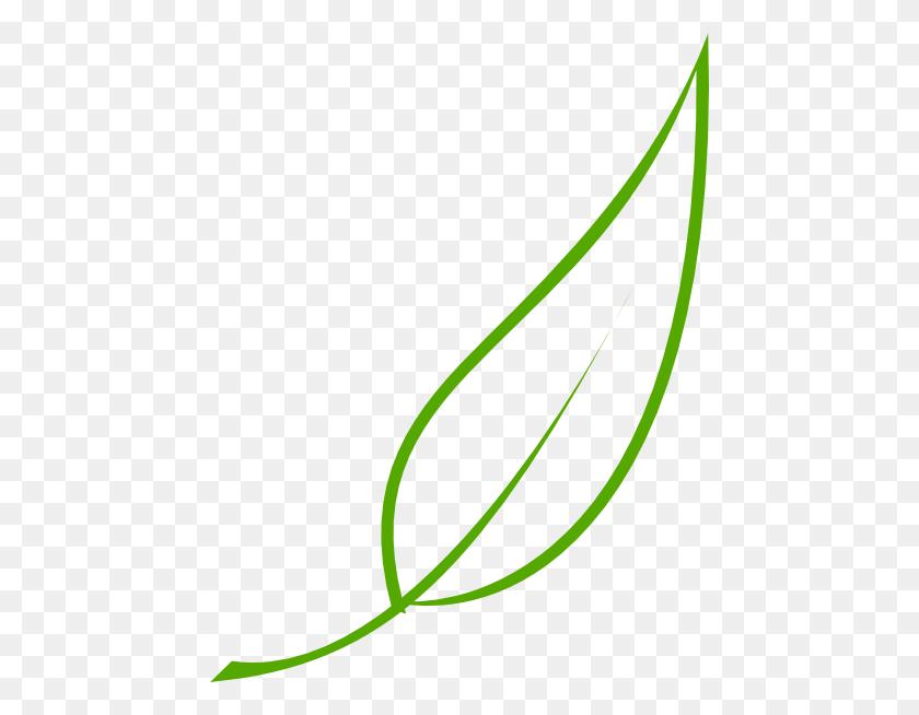 Leaf Clip Art - Olive Leaf Clipart