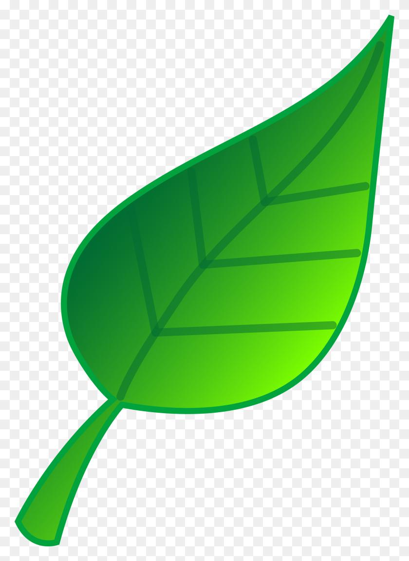 2504x3500 Leaf Clip Art Free - Free Fall Clip Art