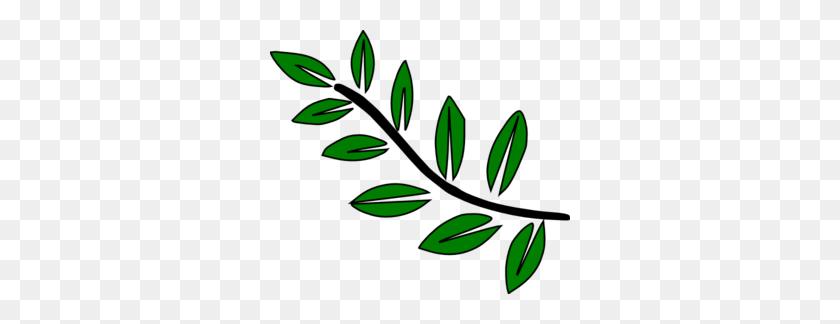 Leaf Stem Clip Art - Plant Stem Clipart
