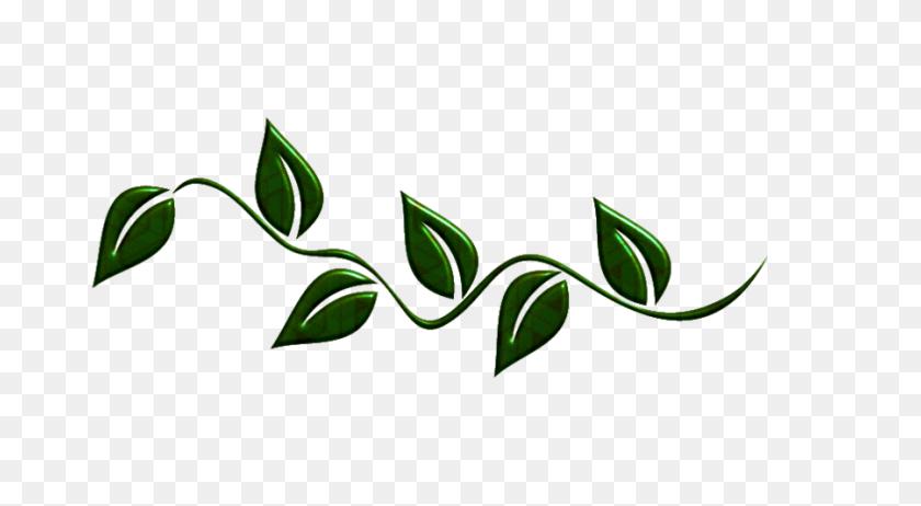Leaf Swirl Png Leaf Border Png Stunning Free Transparent Png Clipart Images Free Download