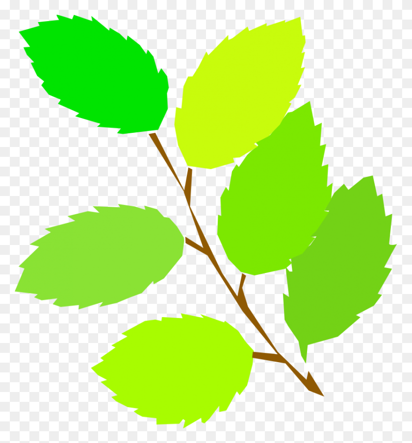 Leaves Clipart Summer - Summer Clipart Free