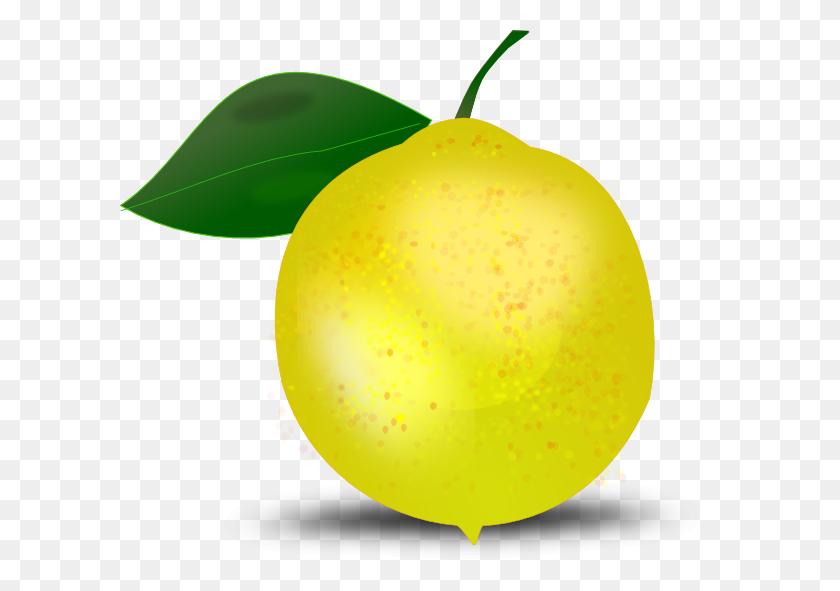 600x531 Lemon Slice Clip Art Wikiclipart - Tangerine Clipart
