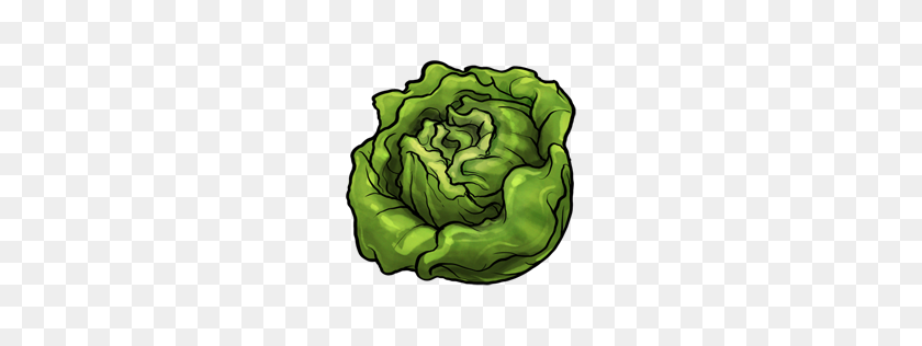 Transparent Salad Clip Art - Lettuce Clipart, HD Png Download - kindpng