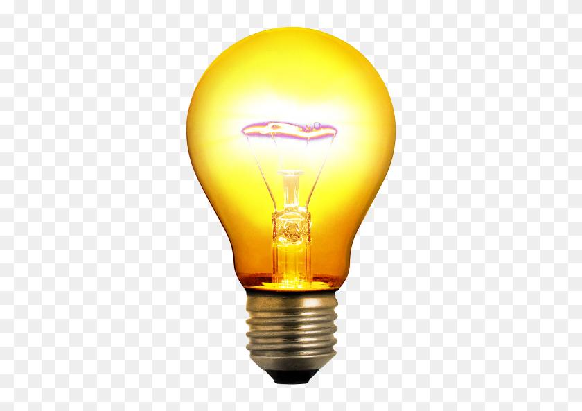 Light Bulbs Gallery Isolated Stock Photos - Light Bulb Clipart No Background