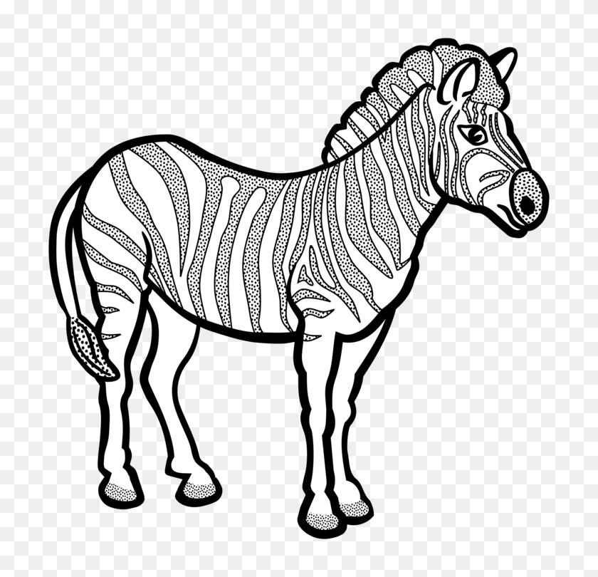 Line Art Zebra Black And White - Pets Clipart Black And White