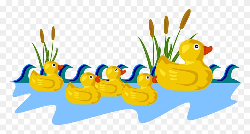 Little Ducks Mallard Water Bird Download - Water Clipart PNG