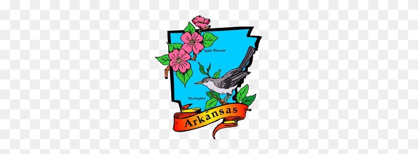 300x250 Little Rock Arkansas State Flower - Arkansas Clipart