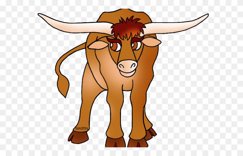 640x480 Longhorn Cattle Clipart Drawing - Longhorn Skull Clipart