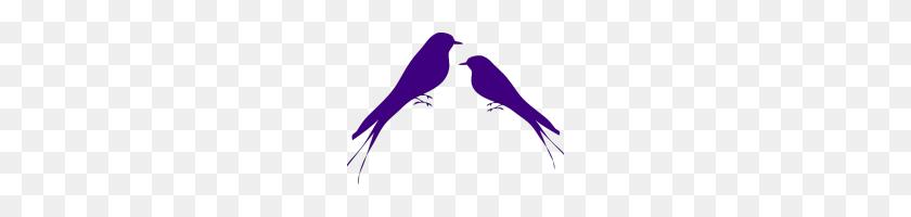 Love Birds Clipart Love Bird Clipart - Lovebird Clipart