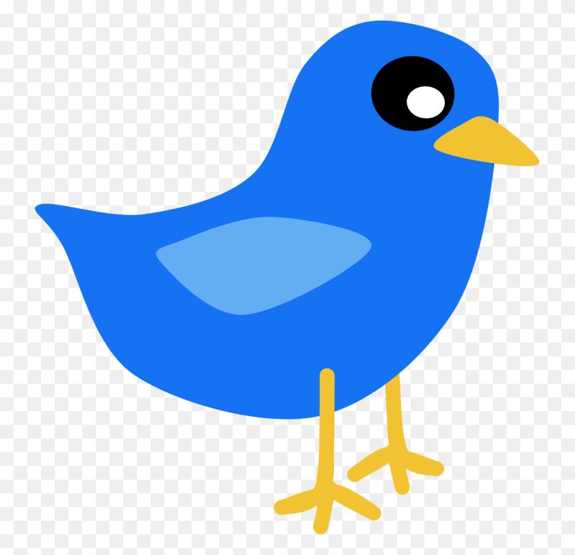 737x750 Lovebird Parrot Drawing Cartoon - Lovebird Clipart