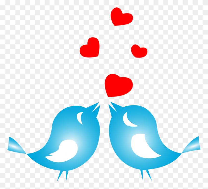Lovebird White Bird Nest - White Bird Clipart