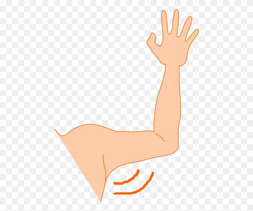 481x642 Lovely Idea Arm Clipart - Arm Clipart
