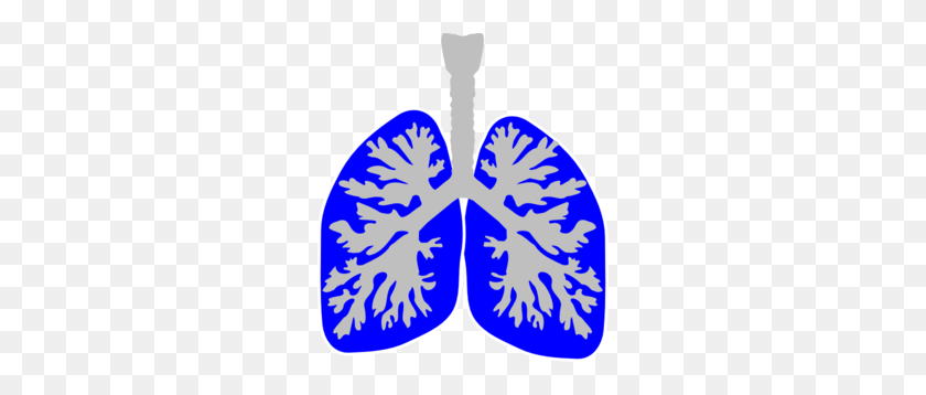 264x298 Lung Blue Clip Art - Lungs Clipart