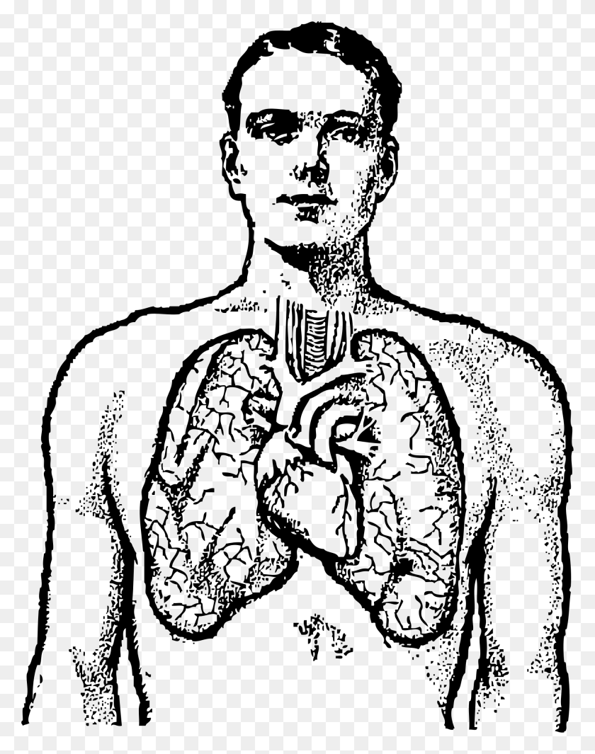 Lungs Clipart Black And White - Person Clipart Black And White