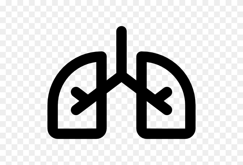 512x512 Lungs Icon - Lungs PNG