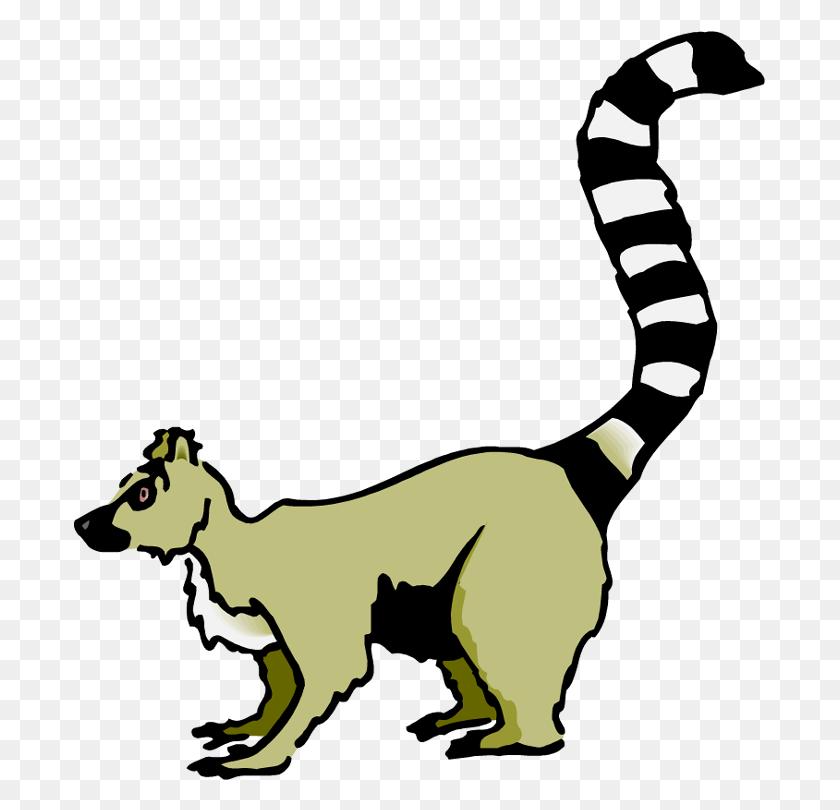 692x750 Madagascar Lemur Clipart - Madagascar Clipart