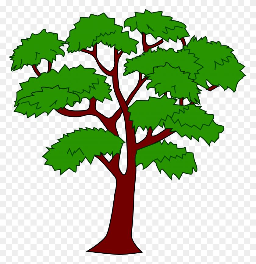 Mahogany Tree Icons Png - Tree Drawing PNG