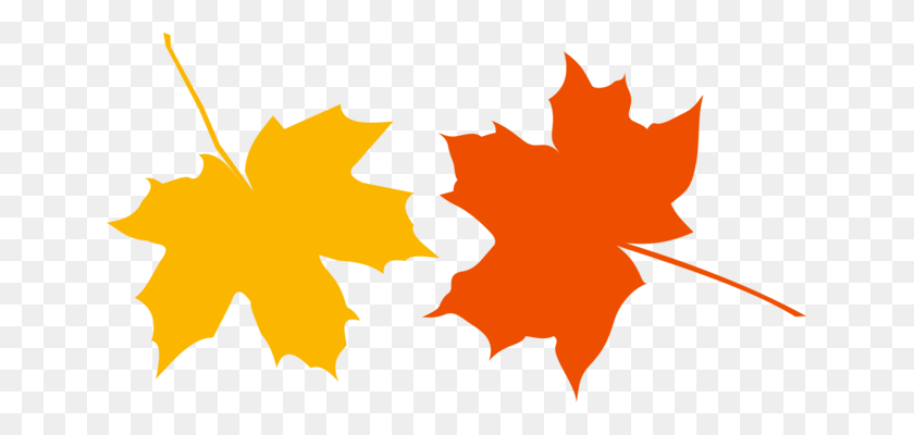 Maple Leaf Canada Japanese Maple Symbol - Japanese Maple PNG