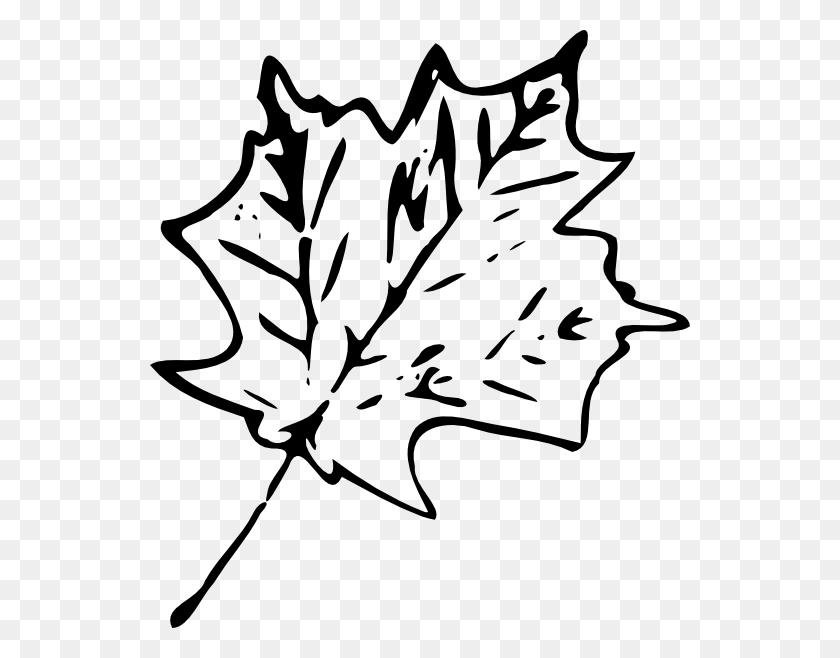 Oak Leaf Clipart Look At Oak Leaf Clip Art Images