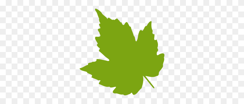 292x300 Maple Leaf Outline Clip Art Free - Maple Leaf Clipart Black And White
