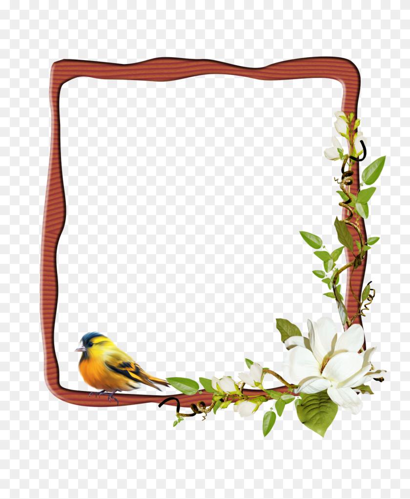 Marco Para Personalizar Con Tu Foto Frames Frame - Marco PNG